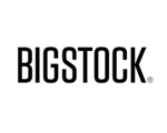 Bigstock Photo Review