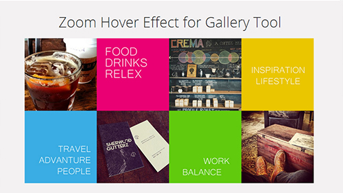 Gallery Zoom Hover Effect