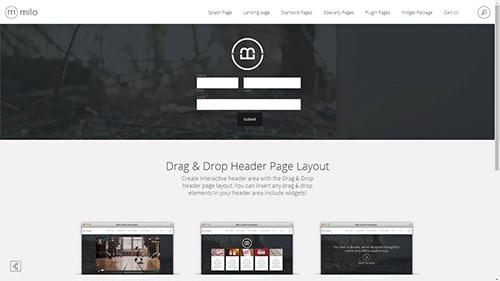 DD Header Page Layout