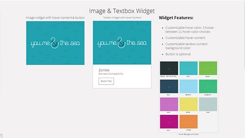 Image & Textbox Widget